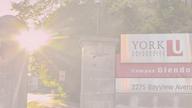 York University - First Language