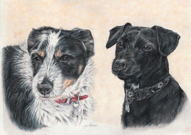 Alfie & Dexter