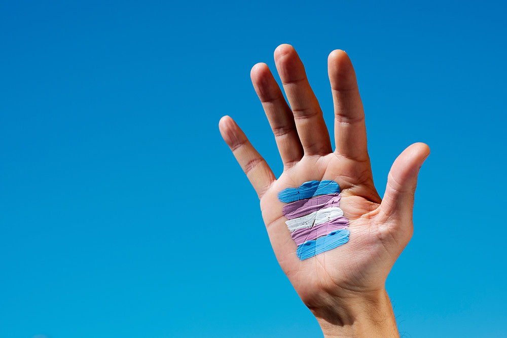 A white-skinned hand extended up against a blue sky background, with a transgender pride flag painted on the open palm.