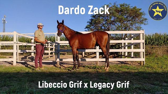 DARDO ZACK