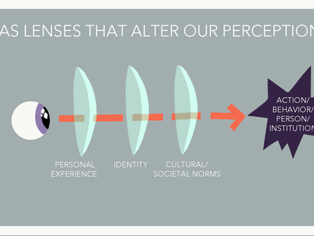 How Bias Influences Perception: Three Lenses