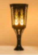 Solar Flame Light.PNG