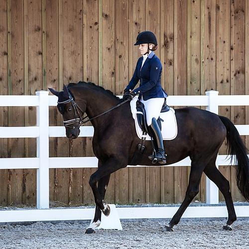Lucky Horse Dressurtage 2019