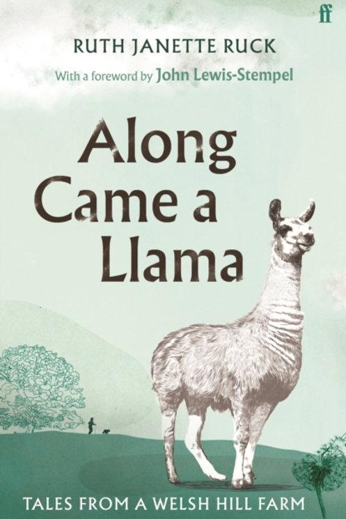 Along Came a Llama
