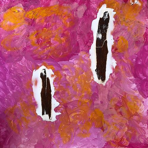 Casca 5   Série Cascas