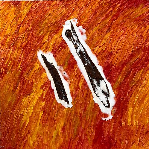 Casca 6   Série Cascas