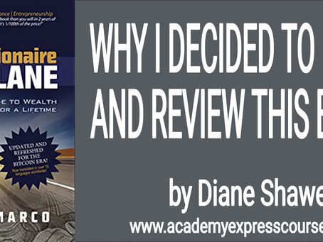 The Anatomy of a Budding Millionaire by Diane Shawe