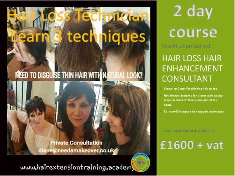 12 Hair Extension Prospectus Cover Diane Shawe learn 3 hair loss techniques