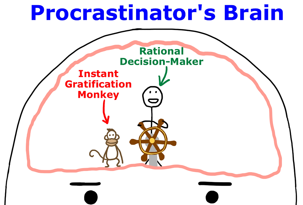 This is a pretty accurate diagram of what goes on in my brain when I procrastinate, because part of me knows I have to be productive, but the Monkey in my brain often knows how to take control!
