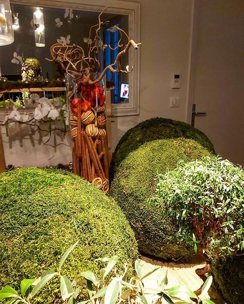 La Forêt  Abrakadama!!!.jpg