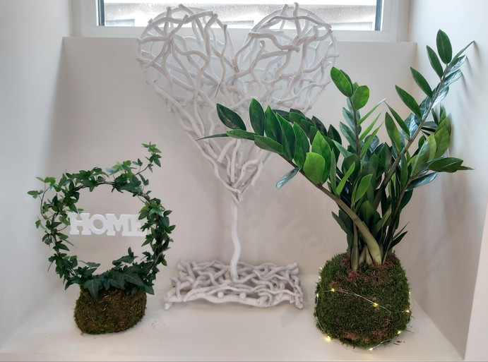 creation-florale-deco-kokedama-7.jpg