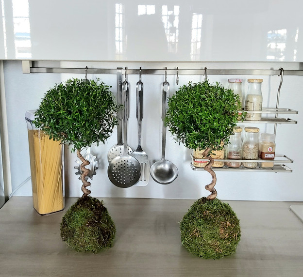 creation-florale-deco-kokedama-22.jpg