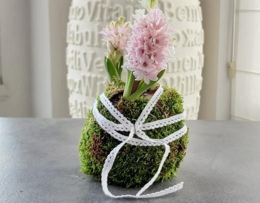 creation-florale-deco-kokedama-hp.jpg