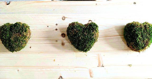 #petit cœur de mousse.jpg