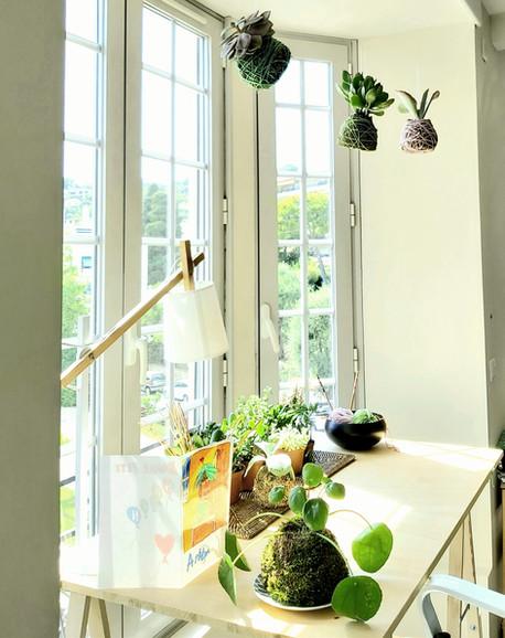 creation-florale-deco-kokedama-atelier-2