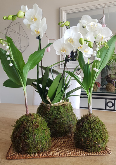 creation-florale-deco-kokedama-12.jpg