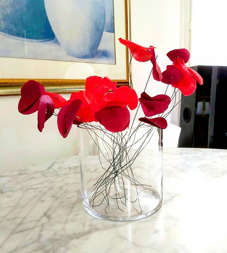 #Crazy coquelicots#love#flowers#home dec