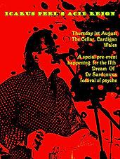 Icarus Peel's Acid Reign: The Cellar Bar