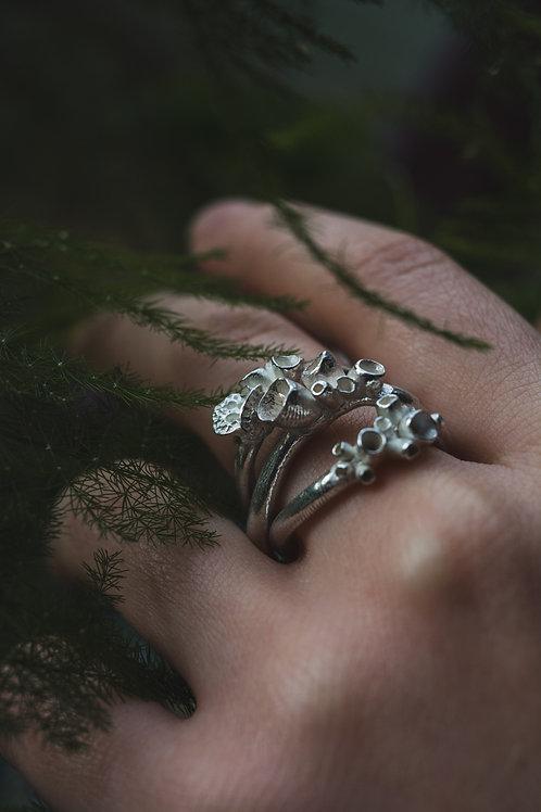 Bespoke Lichen Ring