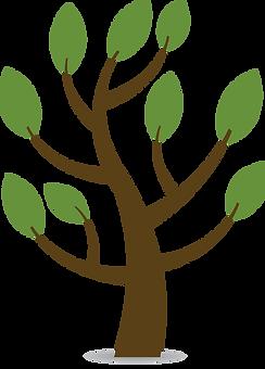 grandir developpement racines ailes autonomie