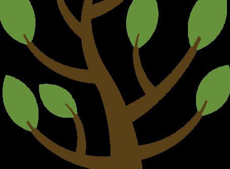 26. Decision Tree