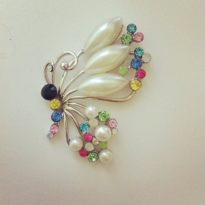 Colourful Pearl Butterfly