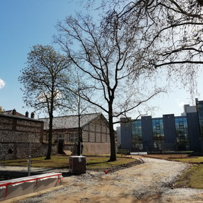 Renaturer Rouen : Faire le deuil de la nature ?
