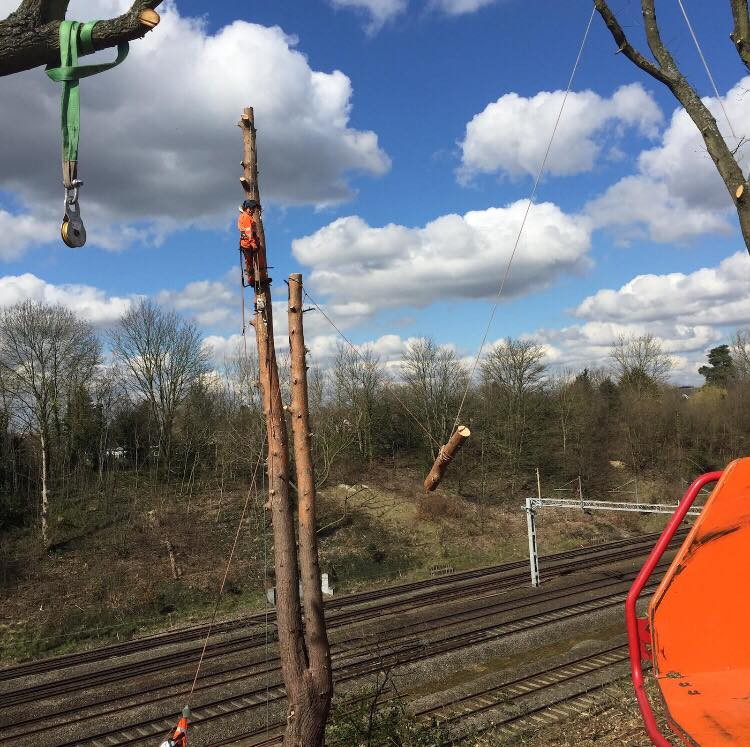 Trainline Removal