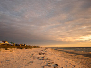 The Best Time to Visit St. George Island