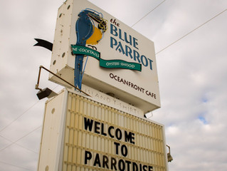The Blue Parrot - a SGI Staple