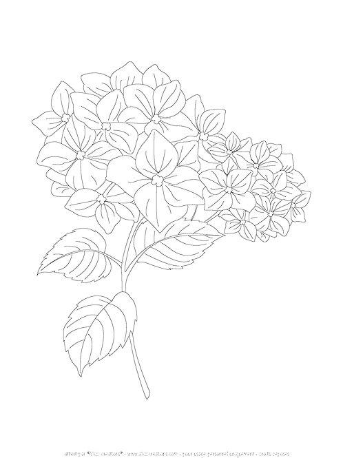 Printable hortensia