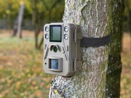 Fototrappole e droni per scovare discariche