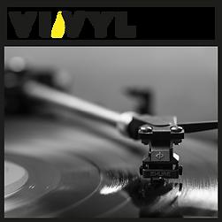Vivyl-image-record-logo_1.png