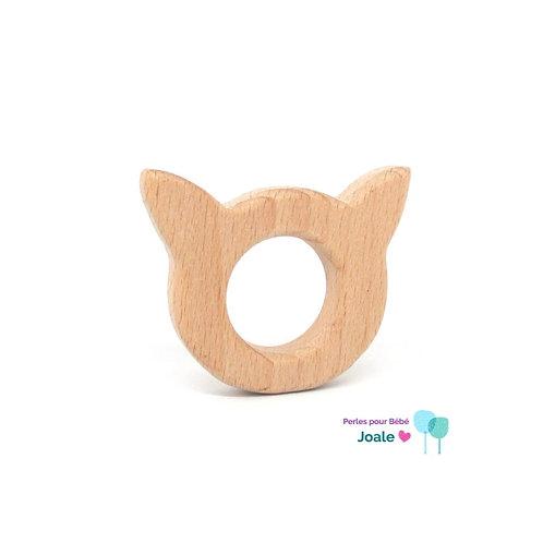 chat dentition bois