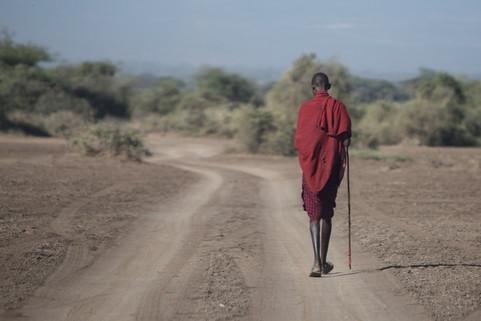 Maasai Man