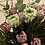 Thumbnail: Bouquet clone
