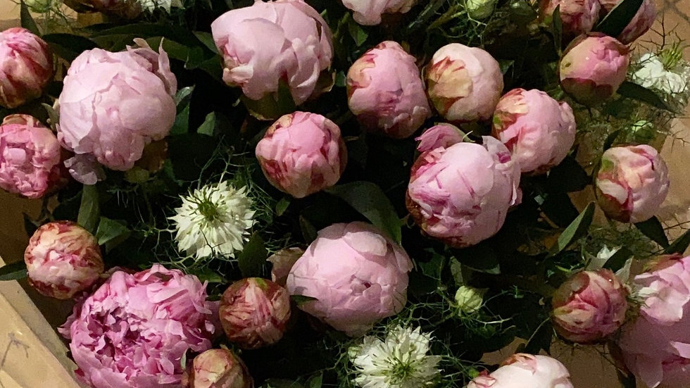 Bouquet de 30 pivoines