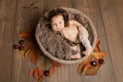 bébé fb 1