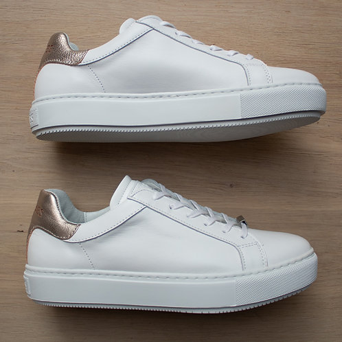0309 Witte gymp Shabbies