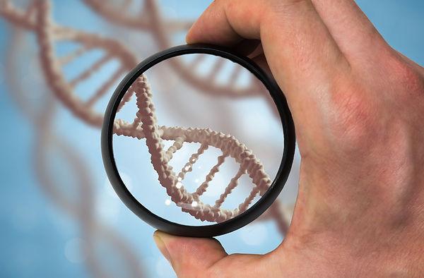 Scientist examines DNA molecule. Genetic
