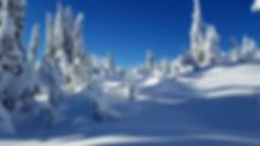 Nieve en Cypress