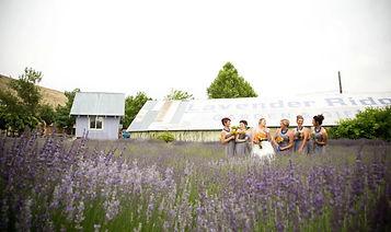 lavender-ridge-wedding-venue.jpg