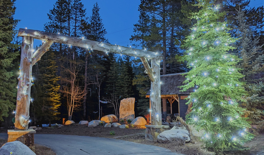 galena_forest_christmas_lights.jpg