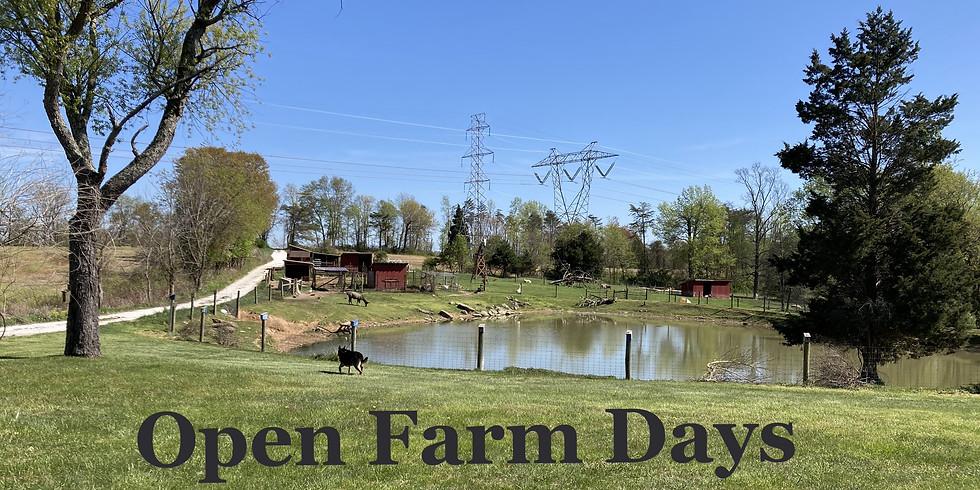 Open Farm Days Wednesdays & Sundays