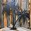 Thumbnail: Double Palm Tree
