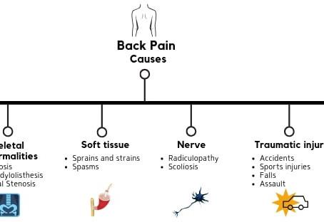 Back Pain - It's a symptom, not a diagnosis.