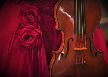 IMG_3664 Rose.jpg