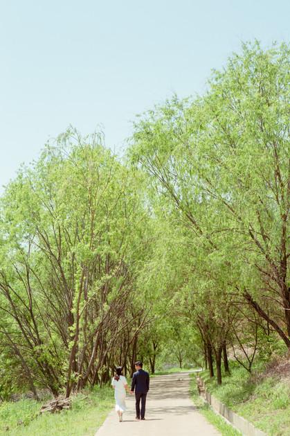 한강공원 - 창경궁