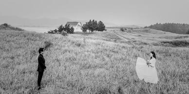 신두리 해안사구 - 여름