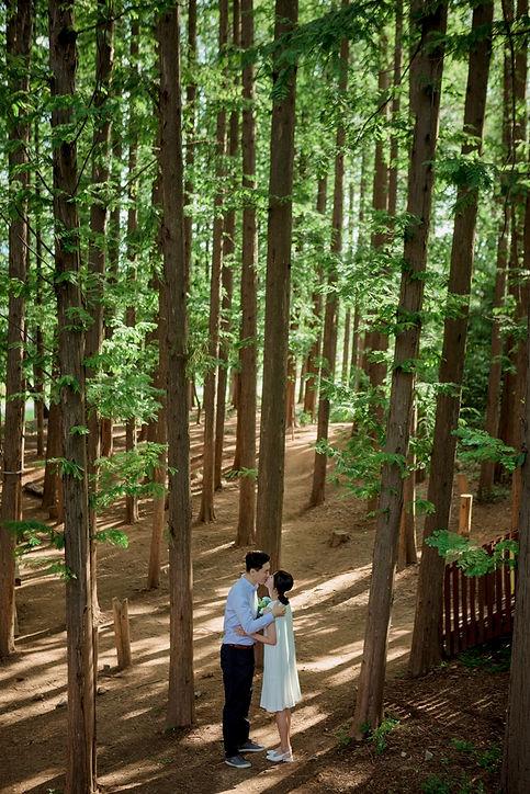 01 숲 (11).jpg